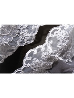 Gorgeous Tidebuy Cathedral Length Lace Wedding Veil
