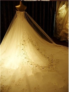 Luxury Rhinestone Beaded Sweetheart Watteau Train A-Line Wedding Dress