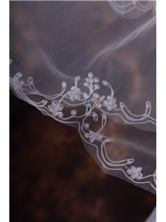 Romantic Chapel Wedding Bridal Veil with Lace Applique Edge