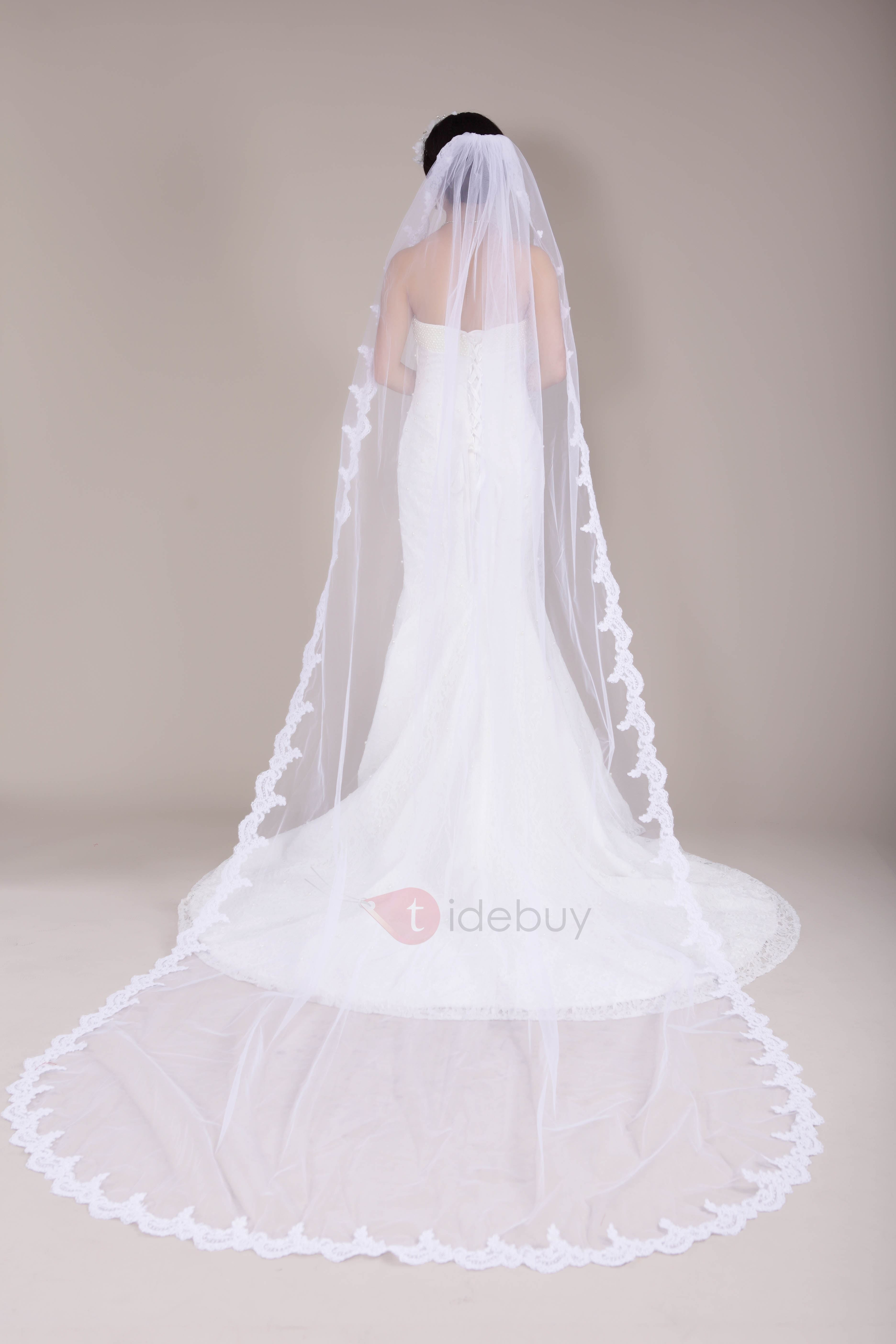 Stunning Lace Chapel Wedding Veil