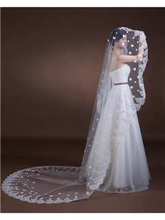 Floral Appliques Lace Edge Cathedral Wedding Veil