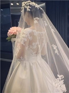 Elegant V Neck Appliques Lace A Line Wedding Dress With Sleeves