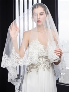 Elegant Appliques Long Wedding Veil