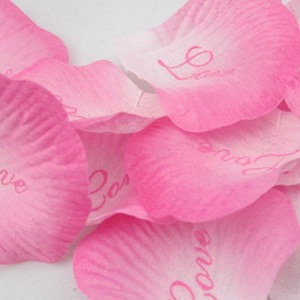 Eye Catching Graduate Color Pink Wedding Rose Petals