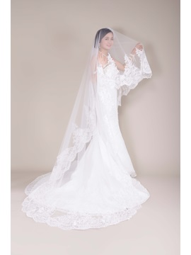 Great Tull Cathedral Wedding Bridal Veil With Applique