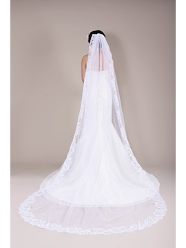Spectacular Cathedral Length Lace Wedding Veil