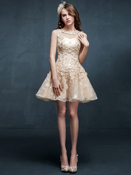 Pretty Jewel Train Appliuqes Lace A Line Short Sweet 16 Dress