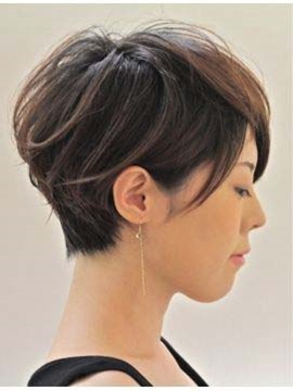 Short Straight Hairstyle Human Hair Capless Wig