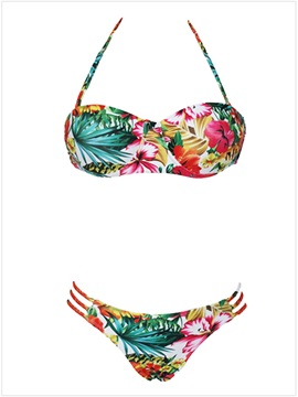 Fahion Print Bikini Beach Vacation Swimsuit