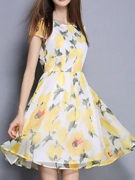 Floral Print Short Sleeve Skater Dress