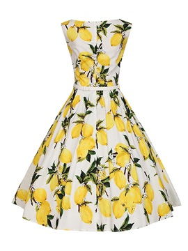Floral Print Round Neck Sleeveless Skater Dress