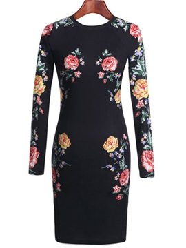 Floral Print Long Sleeve Day Dress