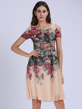 Floral Print Chiffon Pleated Day Dress