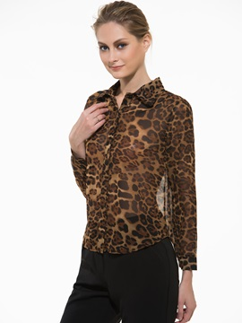 Leopard V Neck Long Sleeve Blouse