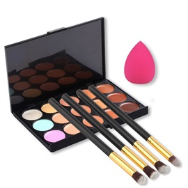 15 Color Concealer And 4 Brushes With A Free Sponge
