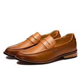 Pointed Toe Slip-On Men's Loafers