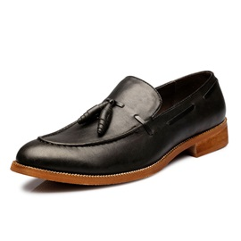 Tassels Pointed Toe Slip-On Men's Casual Shoes