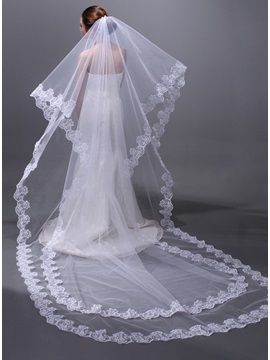Cathedral Wedding Veil with Lace