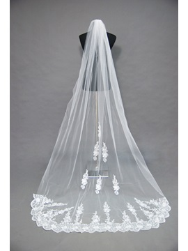 Attractive Floral Edge Cathedral Veil Wedding Bridal Veil