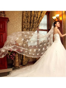 Exquisite Lace Cathedral Length Wedding Veil