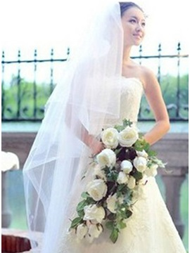 Modern Elbow Wedding Veil With Lace Applique Edge