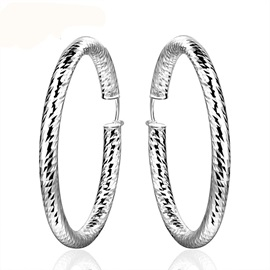 Silver Circle-Shaped Alloy Earrings