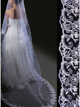 Spectacular Cathedral Length White Lace Wedding Veil
