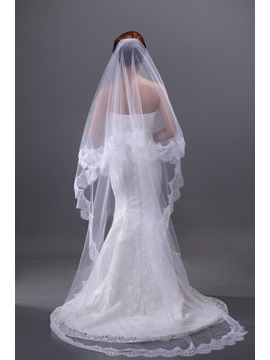 Luxurious Lace Embellishments Cathedral Length Wedding Brail Veil