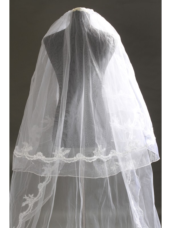 Delicate 2 Layer Cathedral Length Lace Wedding Veil