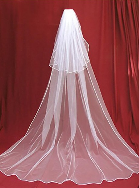 Charming Cathedral Length White Tulle Wedding Veil